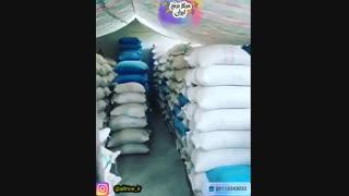 خرید عمده برنج فجر