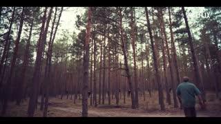 تریلر سریال The Woods