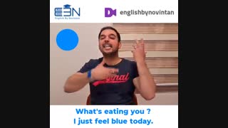 آموزش اصطلاحات رنگ در زبان انگلیسی (2)