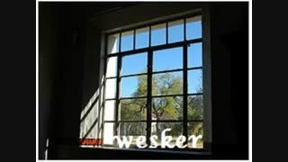 اهنگ پنجره از Wesker