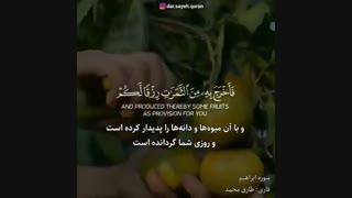 تلاوت آیات32و33 از سوره مبارکه ابراهیم با صدای زیبای طارق محمـــد