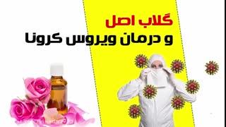 گلاب و درمان ویروس کرونا