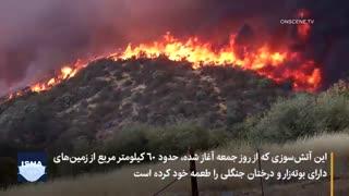آتش کالیفرنیا سرعت گرفت، خانهها تخلیه شدند