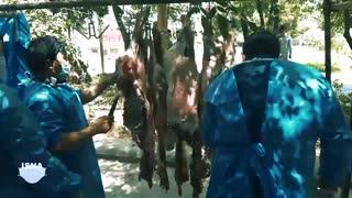 توزیع گوشت نذری در آستانه عید غدیر در قم